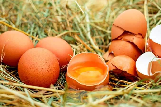 La yema y la cáscara de huevo estimulan la producción de colágeno