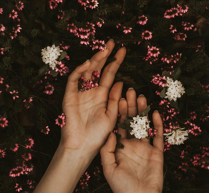 Fabrica tu propia crema de manos - El Círculo de la Belleza